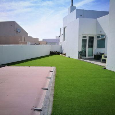 lush-green-grass